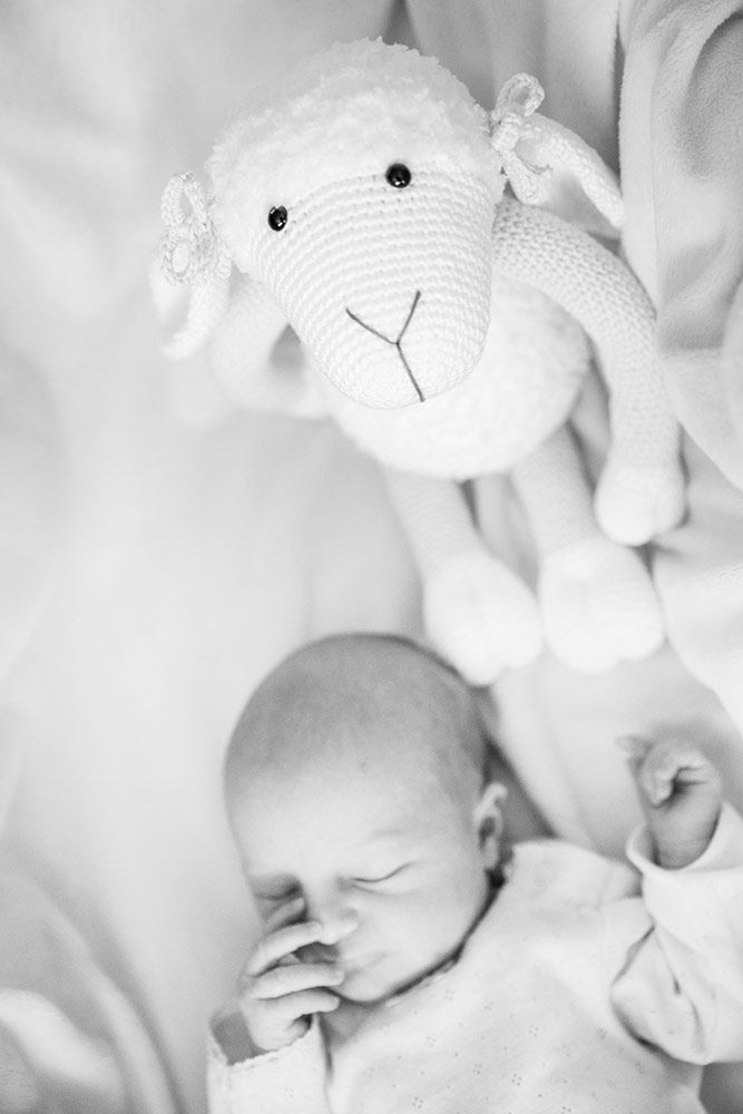 Newborn-fotoshoot-17