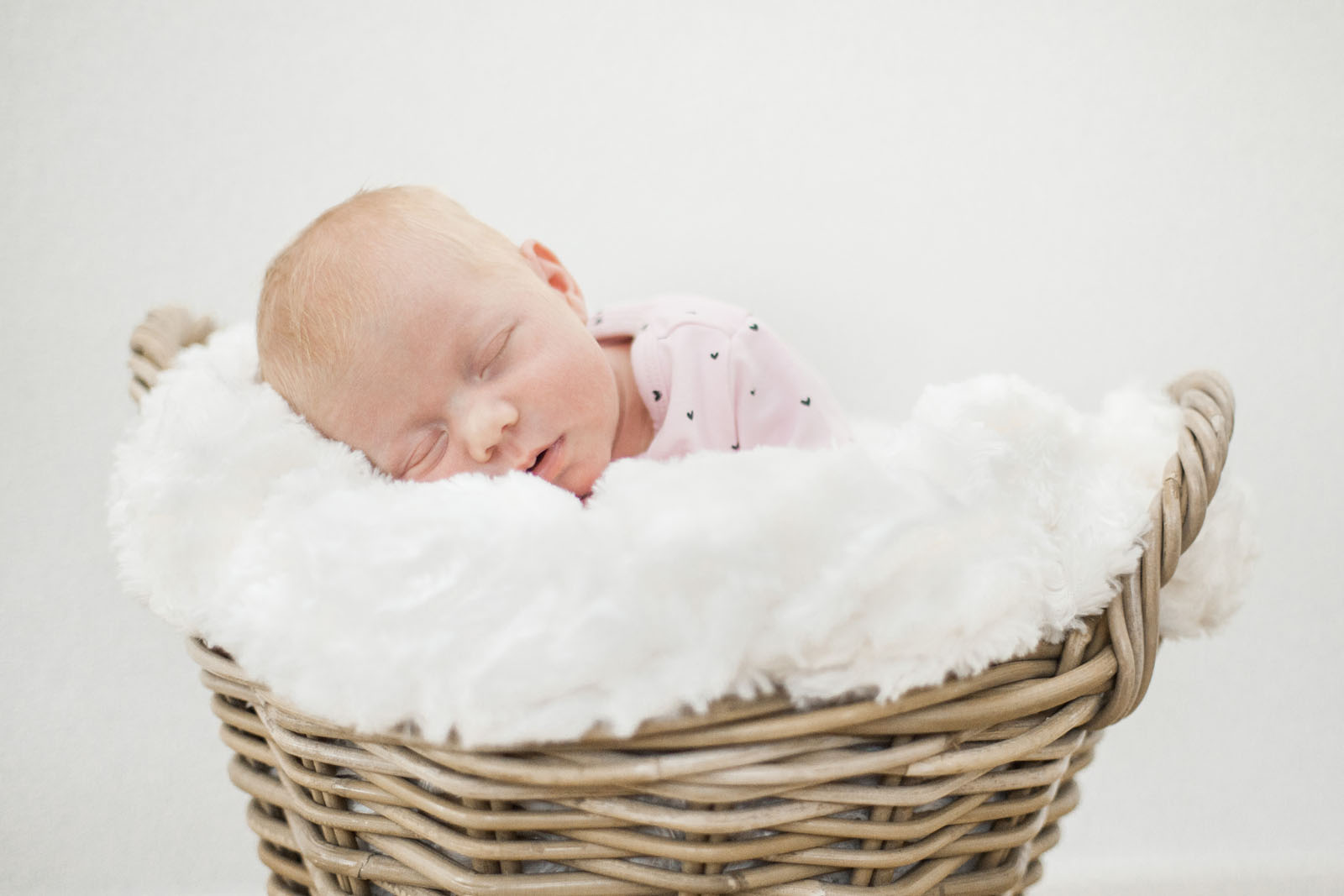 Newbornshoot_Julia_MKF_00033